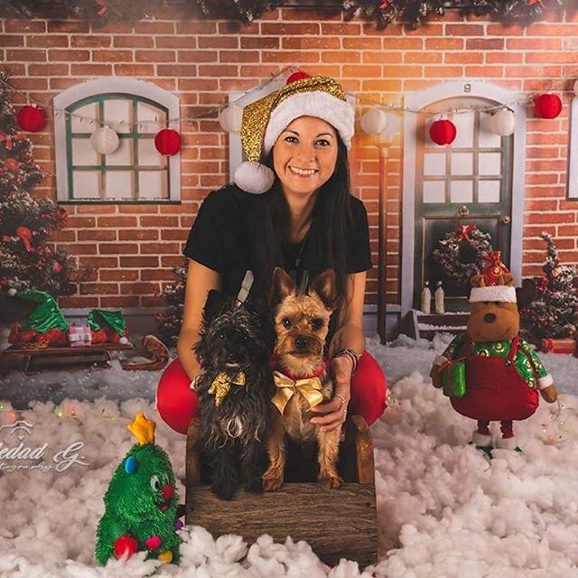 La Navidad en tu hogar