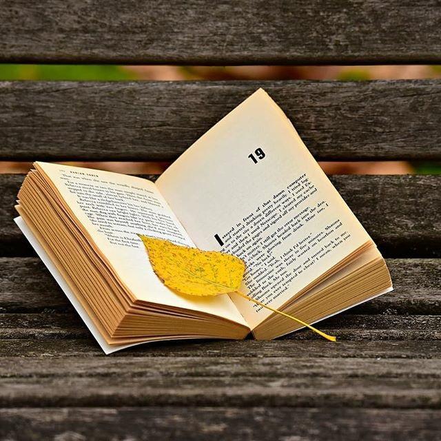 leer es educación