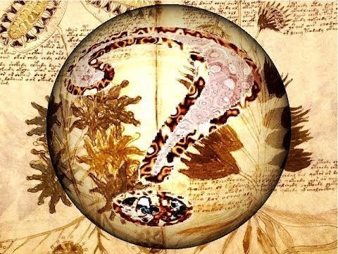 El Manuscrito Voynich