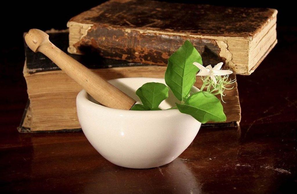Espagiria: alquimia vegetal