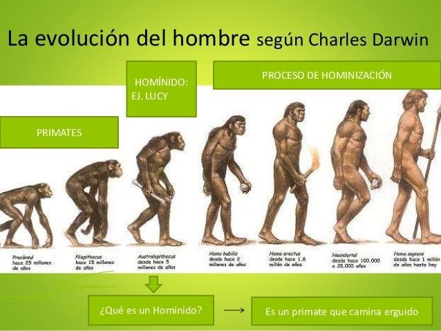 orígenes primitivos